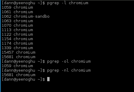 example of pgrep -nl chromium